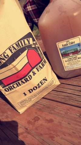 Trip to Longs Farm with cider and doughnuts