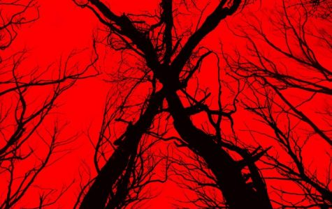 Blair Witch sequel is even better than the original