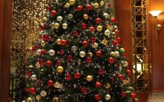 Your guide to the best Christmas trees this season