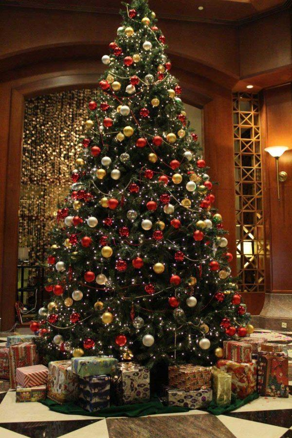 Best Christmas Trees.Your Guide To The Best Christmas Trees This Season The