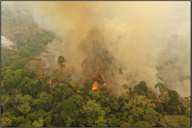 The+Amazon+in+flames+due+to+slash-and-burn+agriculture.