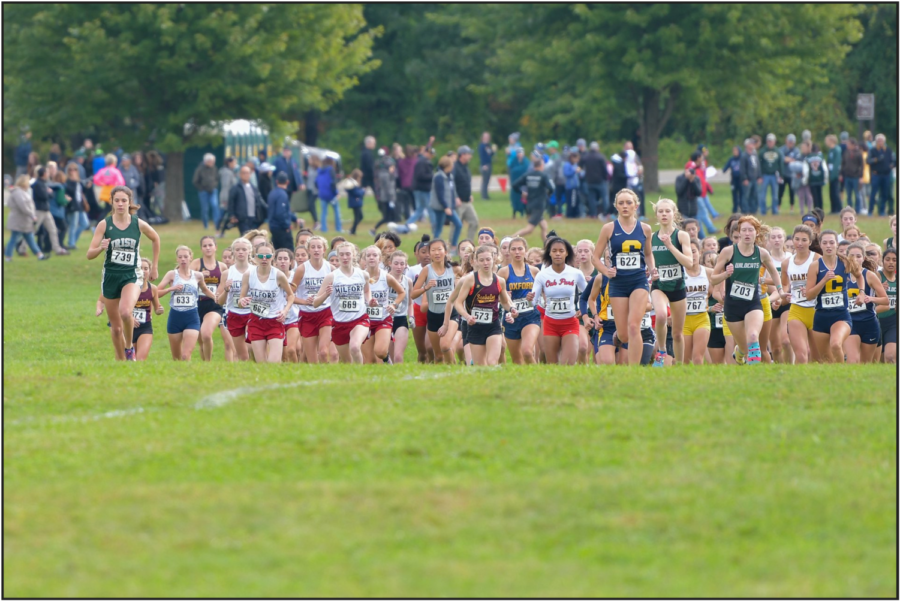 The Girls Cross Country team leading the field at the start of the county meet