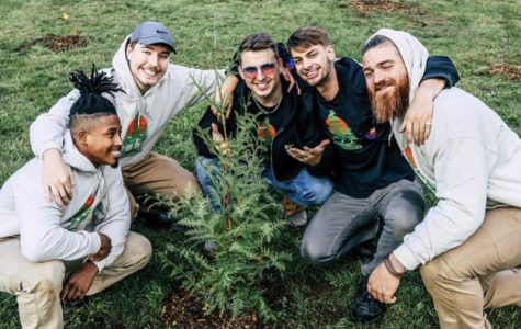 Mr. Beast and his friends planting the first tree.