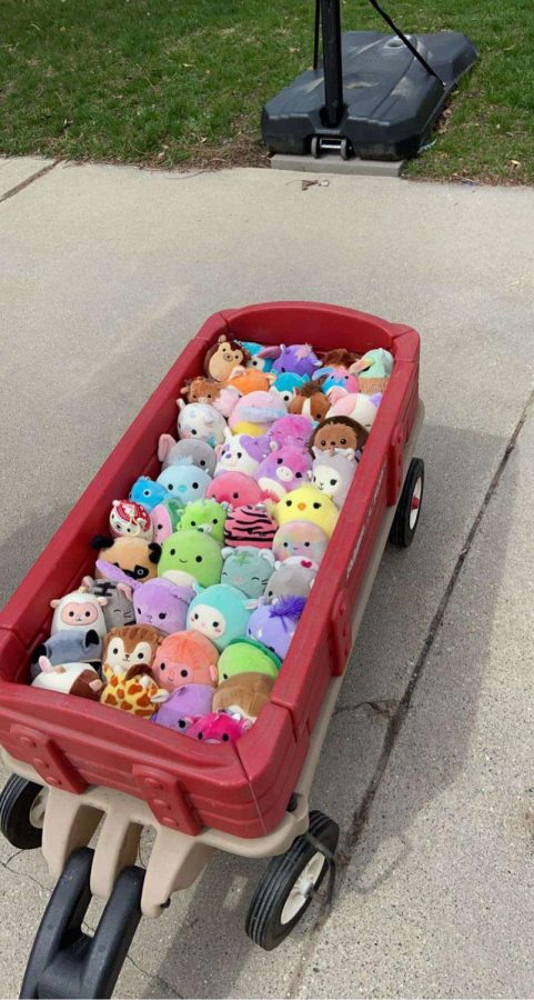 Senior Claire Adams and her sisters have expanded their Squishmallow collection to 143 stuffed animals; shown above is a portion of their collection (Photo courtesy of Claire Adams).